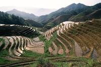 Paddy topography Longji Rice Terraces