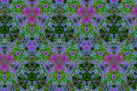 Field of Flowers Kaleidoscope