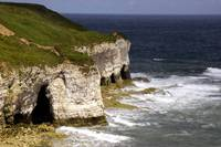 Flamborough (North Cliff)