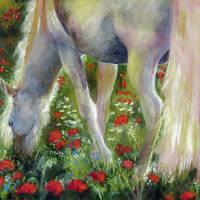 """""""White Stallion Grazing In Poppy Field"""" by GinetteCallaway"""