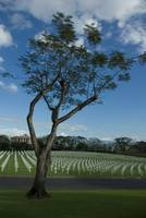 WW2 American Navy Cemetery In Philippines