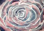 rose flower modern painting