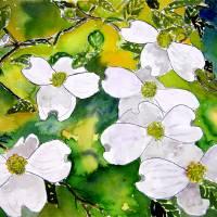"""""""dogwood tree flowers watercolor painting"""" by derekmccrea"""