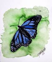 baby room art print blue monarch butterfly