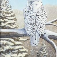 Snowy Owl Art Prints & Posters by Rick Huotari