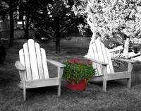Chairs and geraniums