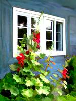 Cottage Garden Windows and Hollyhocks
