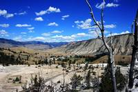 A View of Mammoth Hotsprings