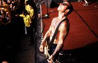 Icon - Social Distortion
