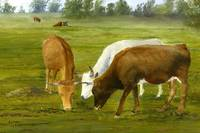 Louisiana Art; Cows Gossip