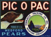 Hunting Dog Medford Pears