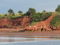 Red seaside cliff on Prince Edward Island