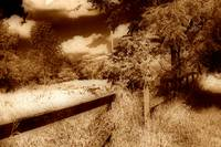 the old fence line sepia A