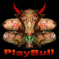 PlayBull enhanced (black background)