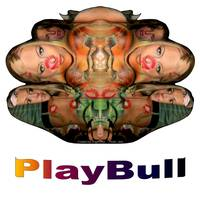 PlayBull original (white background)