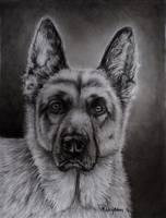noble_GSD_charcoal_0018RC