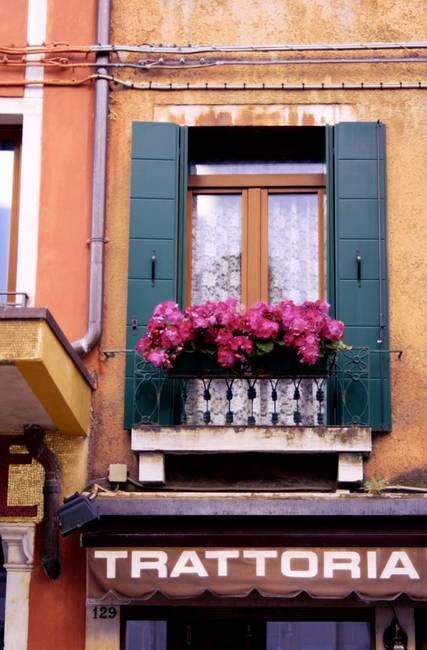 Floral Window in Venice