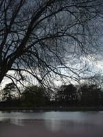 beginning to darken