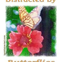 Distracted by Butterflies 04167 Impasto Print Art Prints & Posters by Quotes and Proverbs