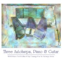 Three Autoharps, Piano, Guitar Poster by Faye Cummings