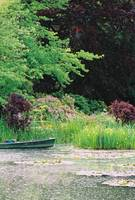 Monet's Garden Pond and Boat