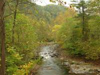 Autumn Mountain Creek