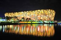 The Bird Nest at Night