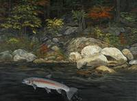 Fine Art Print Steelhead Run Fishing Fish Art