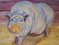 pot belly pig in watercolor
