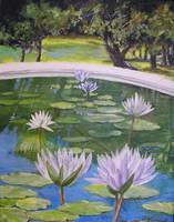 Water Lilies Rising
