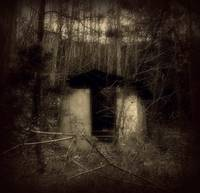 Forgotten Shed