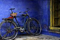 Bicycles in the