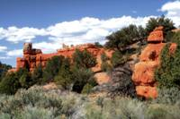 Red Canyon orton 03