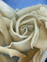 Abstract Cream Rose by Terri Meyers