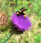 Bee Happy poster Posters