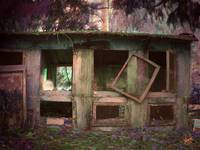 abandoned chicken coop