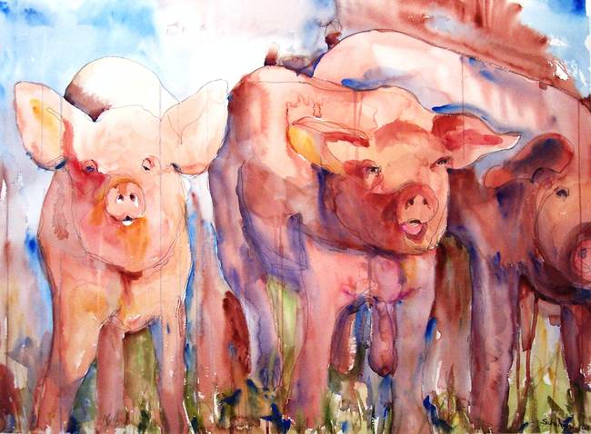 Pig Squeal Watercolor Painting Farm Animal Art By Miriam Schulman