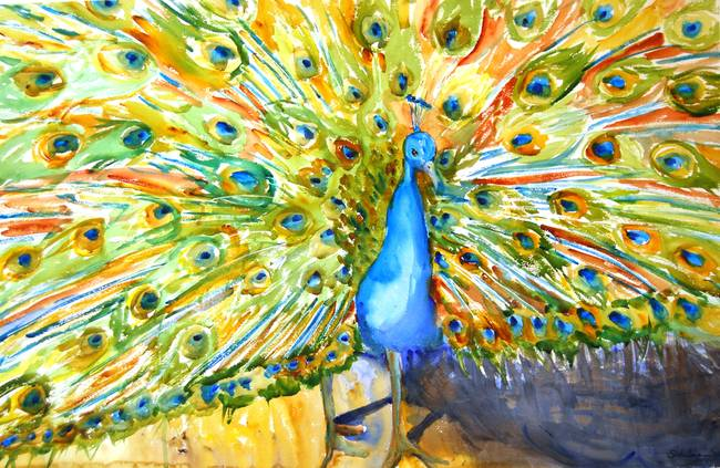 Peacock, Abstract Watercolor Painting