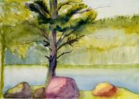 Pink Rock Edgecomb pond Watercolor