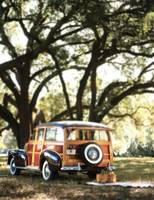 Vintage Ford woody wagon parked under Banyon tree
