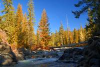 Cle Elum River In Fall    Cascade Mountains