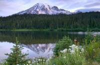 Mt Rainier at Reflection Lake