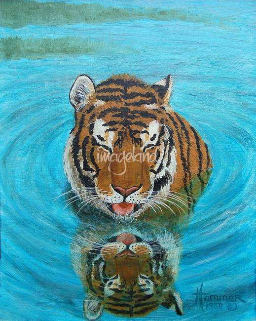 Cool Tiger Painting By Linda Hammar