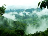 Coffee Land in the Clouds, Costa Rica, Puriscal,