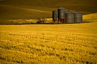 Farm in The Palouse