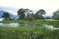 Castle Lough