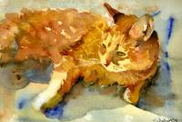 Tabby Lights, Watercolor Painting Animal Orange Ca