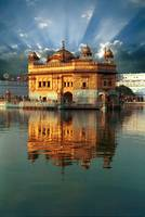 Golden Temple Light