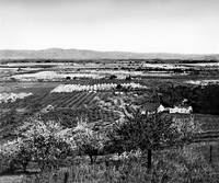 Overlooking Santa Clara Valley c1900 by WorldWide Archive