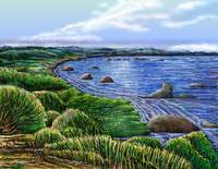 Birds Eye Sea Inlet Painting